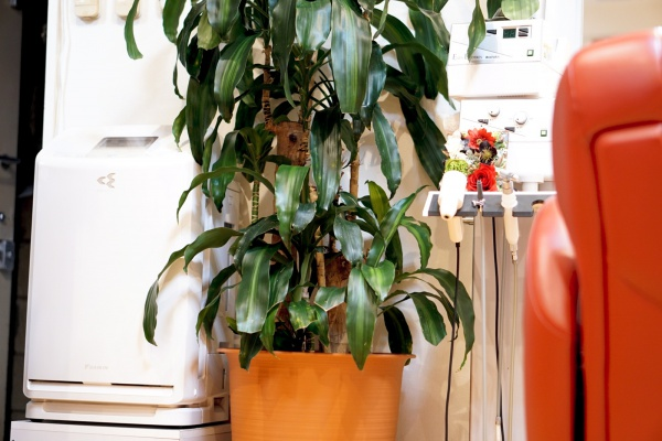 女性個室の空気清浄機