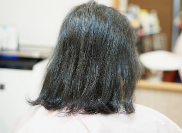 髪がパサパサ