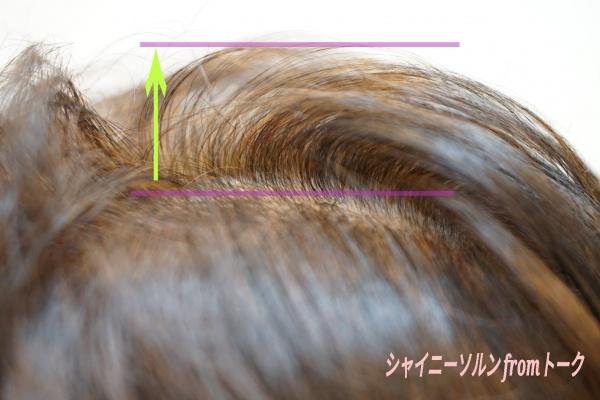 髪のボリューム変化リセッター