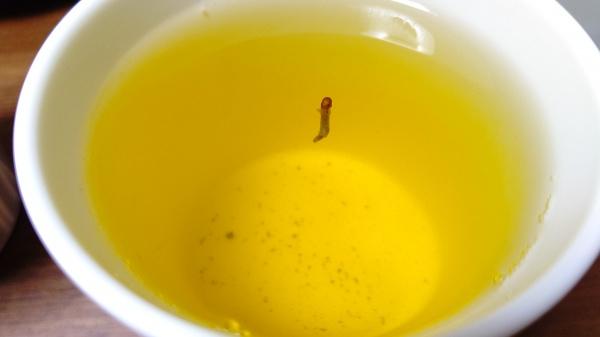茶柱縁起良い